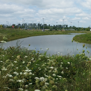 Stormwater Management Facilities