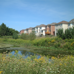 Stormwater Management Facility, Sonoma Heights Subdivision, Woodbrdige Expansion Area, Vaughan, Ontario